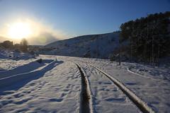 Çayırova'dan Kar Manzaraları 33