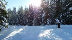 20160101_114053 (mjfmjfmjf) Tags: snow oregon favorited trilliumlake 2016 snoeshoe