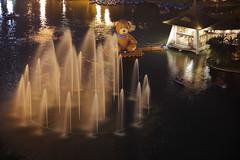 湖心亭看熊 (Eddy_TW) Tags: taiwan taichung 台灣 台中公園 湖心亭 台中市 台中泰迪熊嘉年華