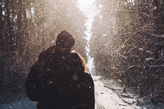 Winter forest (*Nishe) Tags: road trees winter sunlight snow cold love forest couple path embrace blizzard