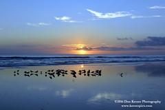 Crescent Beach Sunrise_1011616 (Krnr Pics) Tags: beach sunrise florida crescentbeach staugustine krnrpics kernerpics