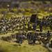 Exposición Bernardo de Gálvez y la presencia de España en México y Estados Unidos, centrada en la figura de este político y militar y en la huella española tanto en México como en Estados Unidos durante el siglo XVIII. para más información: www.casamerica.es/exposiciones/bernardo-de-galvez-y-la-pr...