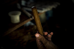 _62A0896 (gaujourfrancoise) Tags: cuba carribean tabac cigars tobacco cigares carabes tobaccoleaves feuillesdetabac gaujour