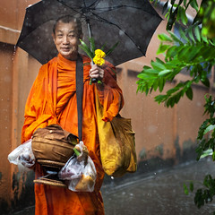Monk Thailand (siebe ) Tags: morning portrait people rain umbrella thailand monk bowl thai alms 2016     siebebaardafotografie