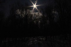 Moonrise over the snowy woods (BSendelbach) Tags: moon snow woods moonrise moonshine moonoversnowwoods