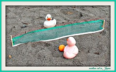 Beach Volleyball Games with the Rubber Duckies... (martian cat) Tags: ©martiancatinjapan allrightsreserved© ©allrightsreserved martiancatinjapan© macro rubberduckiesinjapan© ©rubberduckiesinjapan rubberduckiesinjapan rubberduckies collectibles hobbies diamondclassphotographer flickrdiamond ☺allrightsreserved allrightsreserved ☺martiancatinjapan martiancat martiancat© ©martiancat martiancatinjapan