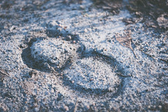 Infinity_by_horses.jpg (Emil Magnusson) Tags: morning horses cold early leaf sand infinity horseshoe