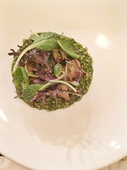 Einkorn with Oyster Mushrooms & a Pure of Green Things (h-bomb) Tags: nyc food brooklyn restaurant finch vegetarian thefinch