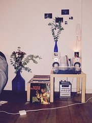 Records at home (maritjevg) Tags: flowers blue music records home vintage interieur vinyl ella songs cosy fitzgerald