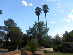 Twin Palms (RobW_) Tags: africa house wednesday palms farm south twin guest uitzicht february 1798 robertson westerncape 2016 fraai 24feb2016