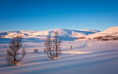 The good winterlife(Explored) (Reidar Trekkvold) Tags: winter snow nature norway landscape vinter skiing natur montain nordnorge fjell troms kvfjord koven sonyrx100