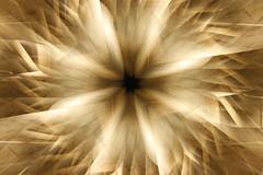 Marble Petals (KOMEG KOLORIZER) Tags: barcelona lightpainting ricardobofill camerarotation komeg kolorizer