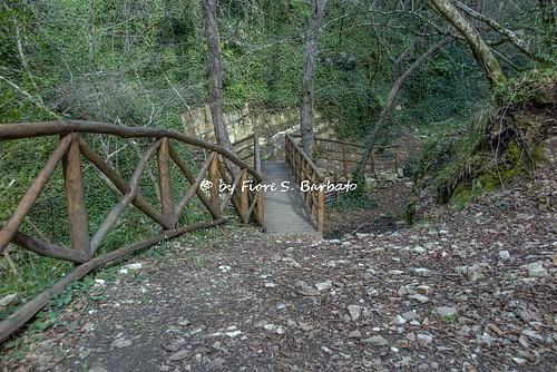 Savoia di Lucania (PZ), 2016, I sentieri del torrente Tuorno.