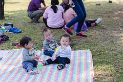 BM7Q4366.jpg (Idiot frog) Tags: park family boy sunlight cute boys field grass kids children happy daylight picnic child outdoor bade happiness sunbath daytime joyful taoyuan happyhour hangout ecosystem