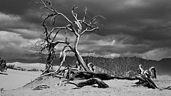 Death Valley (Six Sigma Man (Thanks for the 2.1 Million views)) Tags: nikon nikond3200 desert deathvalley blackwhite 3000v120f greatphotographers platinumheartaward