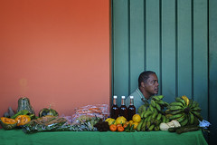 Vendedor (Oscar F. Hevia) Tags: tangerine pumpkin vendedor market oldsanjuan puertorico enero sanjuan mercado honey miel mandarina calabaza seller viejosanjuan mercadillo ecological ecologico 2011 cuarteldeballajá oldstjuan mercadoagrícolanaturalviejosanjuan