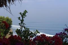 The Temple Lodge, Bali (scinta1) Tags: ocean flowers sea bali hotel surf waves view surfing villa accomodation bukit clifftop bourganvillia pecatu bingin thetemplelodge geckosuite