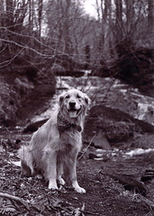 Ziggy (Chris B70D) Tags: sky white black film water 35mm print outdoors photography aperture scenery exposure exploring grain first scanned manual miranda attempt settings develop 7x5