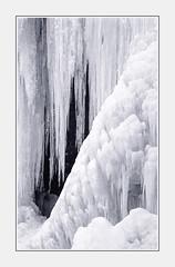 - File1224 (Ferruccio Jochler) Tags: gelo natura inverno ghiaccio