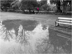 Day 070 Running in pink (Dominic@Caterham) Tags: pink trees mono runners floods