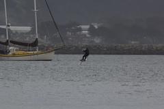 IMG_2504 (armadil) Tags: beach beaches mavericks kitesurfers windsurfers californiabeaches