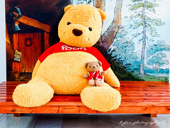 We are twins () Tags: bear japan stars olympus seven pooh fukuoka  winnie    zuiko kumamoto omd    em1 918      m43                    micro43 microfourthirds kumamon  olympusem1