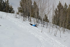 Olsen found a sledding hill (Aggiewelshes) Tags: travel winter snow april snowshoeing wyoming jacksonhole grandtetonnationalpark 2016 gtnp taggartlaketrail