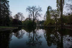 Reflections in Stadt Park (Briantc) Tags: vienna trees reflection reflections dawn austria stadtpark