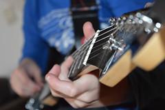 Peavy Gitaar (Werner Willemsen) Tags: music guitar gitaar peavy