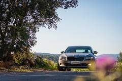 Superb (Tiomax80) Tags: auto 3 france beauty car grey gris beige pub nikon raw nef superb iii ad 85mm headlights voiture commercial nikkor cappuccino ambition fahrzeug skoda schnheit 2016 phares d610 tiomax