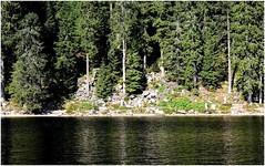 Mummelsee (horidole) Tags: see wasser schwarzwald blackforest badenwrttemberg mummelsee fortnoire berndsontheimer
