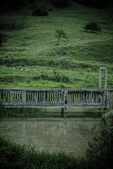 #216 of 365 - Deck Bridge (Ruadh Sionnach) Tags: ranch bridge light camp lake nature water field canon natural farm natureza medieval deck campo celtic druid viking amateur rancho fazenda druidism canoncamera nadur t5i canont5i