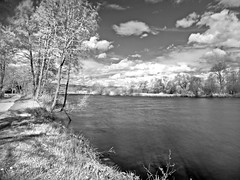 At the riverbank (rotraud_71) Tags: trees sky bw water clouds ir explore regensburg flussufer mariaort rivernaab