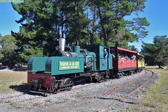 DS_Train_11_McLeansIsland_10April2016.JPGDS_Train_10_McLeansIsland_10April2016 (nzsteam) Tags: price train island traction engine railway scene steam engines locomotive boiler boilers mcleans sawmilling