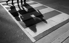 Crossing (QC Doc) Tags: street shadow toronto walking streetphotography crosswalk