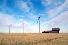 Taber Wind Farm - electricity for Calgary (Green Energy Futures) Tags: calgary alberta windpower renewableenergy carbontax
