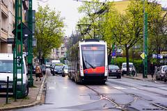 Solaris Tramino S100 #451 (ukasz Janowicz) Tags: tram 451 solaris pozna tramwaj s100 wilda mpkpozna tramino