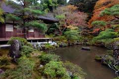 Ginkakuji Temple (Patrick Foto ;)) Tags: park old travel autumn red color building tree green heritage fall tourism nature water beautiful beauty yellow japan architecture silver garden season landscape temple japanese tokyo design leaf maple pond kyoto colorful asia view gardening outdoor path buddhist traditional famous religion seasonal peaceful buddhism landmark jp zen pavilion butchart ginkakuji kytoshi kytofu