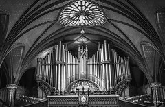 Notre-Dame Basilica of Montral (   (Thank you, my friends, Adam!) Tags: blackandwhite white black art lens photography nikon gallery photographer angle montral basilica fine wide notredame excellent dslr    wide