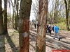 """2016-04-20 Schaijk 25 Km   Foto's van Heopa   (71) • <a style=""""font-size:0.8em;"""" href=""""http://www.flickr.com/photos/118469228@N03/26480308961/"""" target=""""_blank"""">View on Flickr</a>"""
