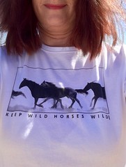 Please Help Keep Wild Horses Wild (Livin' In The Wild, Wild West) Tags: music cloud wildhorses stallion mustangs helpplease takeastand cloudfoundation glennsymmonds haveavoice keepwildhorseswild