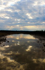 cloudy reflection (SK.Photos) Tags: reflection wasser mud cloudy wolken wolkig lacke