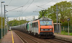 BB26087 & 75127 (Oliver_A) Tags: train prima sncf sybic bb26000 transcereales bb75000 bb26087 bb75127