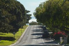 IMG_0898-1 (DaveHamburger) Tags: la losangeles manhattanbeach hermosa redondobeach culvercity palosverdes culverhotel