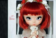Rose (Mikiyochii) Tags: doll dolls groove pullip pullips puppe pullipdoll customdoll pullipcustom fullcustom pullipfullcustom pullipfc