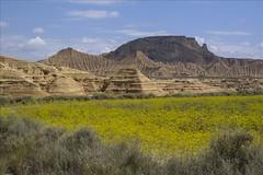 P539 (1024x768) (deckard560) Tags: espaa beautiful spain desert desierto lanscape navarra bardenas reales