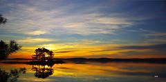 Lac de Lacanau. (patricia.bardon) Tags: sunset pentax ricoh artofimages pentaxart bestcapturesaoi elitegalleryaoi patriciabardon pentaxk3