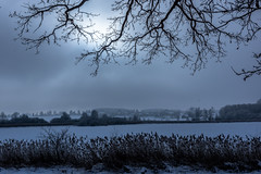The wide Country (*Capture the Moment*) Tags: schnee trees winter mist lake snow nature germany bayern deutschland bavaria frost outdoor natur bäume wetter draussen landschaften dunst 2016 egglburgersee sonya77 lakeegglburg sigma1181835mmart