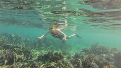 Float (tkolos) Tags: water coral swimming swim mexico puerto snorkel dive scuba diving snorkeling cancun reef morelos quintanaroo puertomorelos gopro