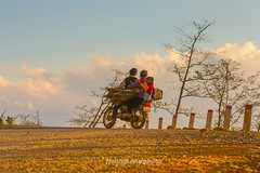 Y1222.0213.Hu Tho.Sapa.Lo Cai (hoanglongphoto) Tags: life road sky people cloud sunlight color tree canon asian asia afternoon outdoor candid vietnam motorcycle dailylife sapa woodcutter motorcyclist sunnyafternoon colorimage ngi cy butri mu mt locai nng candidcapture my cucsng ithng xemy hmongpeople ngoitri conng candidimage conngi chu vietnamnorth nngchiu ngnam buichiu vchng tnhin mmy hutho ngihmng cucsngthngngy bcvitnam ngi canoneos1dx nhmu ngiixemy ngiimt chptnhin hnhnhtnhin trungthc hnhnhtrungthc vchnghmng